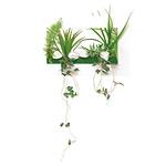 3Dアートドラセナ (人工観葉植物) 高さ44cm 光触媒 (391A30)