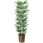 【送料無料】黒竹 (人工観葉植物) 高さ160cm 光触媒 (404A300)
