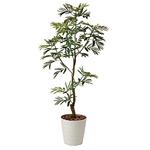 【送料無料】ねむの木 (人工観葉植物) 高さ155cm 光触媒 (419A280)