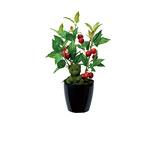 チェリーベア (人工観葉植物) 高さ38cm 光触媒 (431A35)