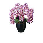 【送料無料】フレッシュ胡蝶蘭5本立L (造花) 高さ58cm 光触媒 (449A200)