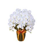 エレガント胡蝶蘭W (造花) 高さ64cm 光触媒 (452A80)