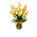 オンシジュームM (造花) 高さ50cm 光触媒 (454A50)
