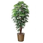 【送料無料】シュロチク (人工観葉植物) 高さ180cm 光触媒 (501A400)
