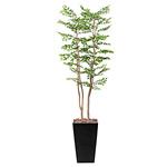【送料無料】アートゴールデンリーフ (人工観葉植物) 高さ180cm 光触媒 (505A520)