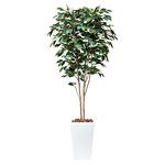 【送料無料】アートベンジャミン (人工観葉植物) 高さ180cm 光触媒 (507A480)