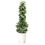 【送料無料】ポトス1.5 (人工観葉植物) 高さ150cm 光触媒 (509A300)