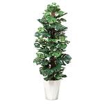 【送料無料】スプリット (人工観葉植物) 高さ135cm 光触媒 (512A250)