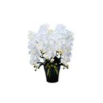 【送料無料】ロイヤル胡蝶蘭5本立W (造花) 高さ80cm 光触媒 (532A300)