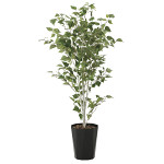 【送料無料】白樺1.4 (人工観葉植物) 高さ140cm 光触媒機能付 (607A270)