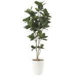【送料無料】パンの木 (人工観葉植物) 高さ125cm 光触媒 (611E200)