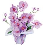 ホットファレノ (造花) 高さ35cm 光触媒機能付 (68A25)