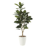 【送料無料】ゴムの木 (人工観葉植物) 高さ125cm 光触媒 (710E200)