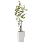 【送料無料】アーバンブランチツリー (人工観葉植物) 高さ180cm 光触媒 (711A450)