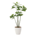 【送料無料】ブランチウンベラータ (人工観葉植物) 高さ115cm 光触媒 (721A230)