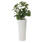 【送料無料】ウンベラータ (人工観葉植物) 高さ140cm 光触媒 (725A600)