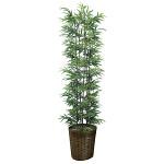【送料無料】黒竹 (人工観葉植物) 高さ180cm 光触媒 (775A450)