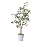 【送料無料】ウィービングフィカス (人工観葉植物) 高さ180cm 光触媒 (802A320)