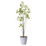 【送料無料】ブランチツリー (人工観葉植物) 高さ170cm 光触媒 (813A250)