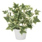 斑入りアイビー (人工観葉植物) 高さ23cm 光触媒 (834A25)