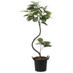 【送料無料】【2020年新商品】インテイアウンベラータ1.65 (人工観葉植物) 高さ165cm 光触媒機能付 (2026A250)