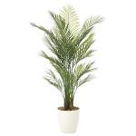 【送料無料】【2020年新商品】アレカパーム1.5(ポリ製) (人工観葉植物) 高さ150cm 光触媒機能付 (2108A370)