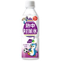 熱中対策水 500ml 24本入 ぶどう味 (HO-363)