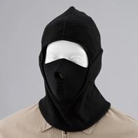 フルフェイスマスク (WT-406)