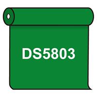 【送料無料】 ダイナカル DS5803 エメラルドグリーン 1020mm幅×10m巻 (DS5803)