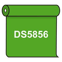 【送料無料】 ダイナカル DS5856 ブライトグリーン 1020mm幅×10m巻 (DS5856)