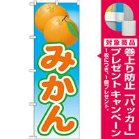 のぼり旗 みかん 絵旗 -2 (21425) [プレゼント付]