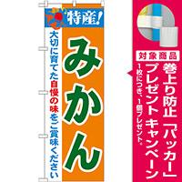 のぼり旗 特産!みかん (21478) [プレゼント付]
