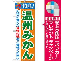 のぼり旗 特産!温州みかん (21480) [プレゼント付]