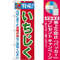 のぼり旗 特産!いちじく (21488) [プレゼント付]