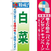 のぼり旗 特産!白菜 (21494) [プレゼント付]