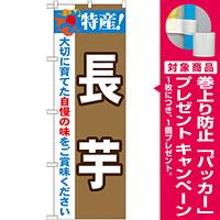 のぼり旗 特産!長芋 (21508) [プレゼント付]