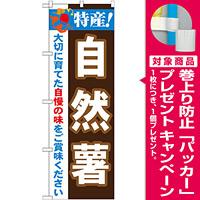 のぼり旗 特産!自然薯 (21509) [プレゼント付]