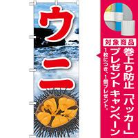のぼり旗 ウニ 絵旗 -2 (21605) [プレゼント付]