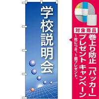 のぼり旗 学校説明会 ブルーバック (22321) [プレゼント付]