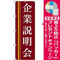 のぼり旗 企業説明会 エンジ (22328) [プレゼント付]