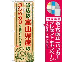 ご当地のぼり旗 富山県産 内容:コシヒカリ (SNB-904) [プレゼント付]