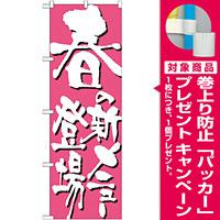 のぼり旗 表記:春の新メニュー登場 (7147) [プレゼント付]
