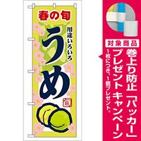 のぼり旗 春の旬 うめ 7866 [プレゼント付]