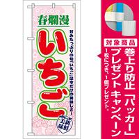 のぼり旗 春爛漫 いちご 7894 [プレゼント付]
