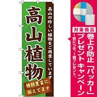 のぼり旗 表示:高山植物 (GNB-1072) [プレゼント付]