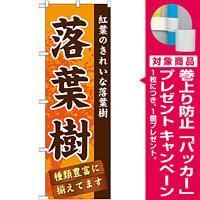 のぼり旗 表示:落葉樹 (GNB-1073) [プレゼント付]