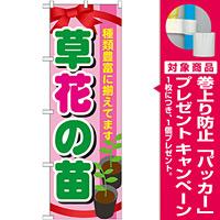 のぼり旗 表示:草花の苗 (GNB-1079) [プレゼント付]