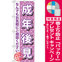 のぼり旗 成年後見 (GNB-1091) [プレゼント付]