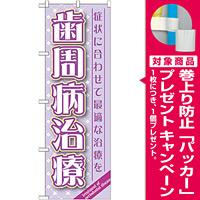 のぼり旗 歯周病治療 (GNB-1466) [プレゼント付]