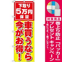 のぼり旗 下取り5万円保証 車買うなら今がお得 ! (GNB-1532) [プレゼント付]